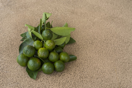 Lime fruit with tile backgound
