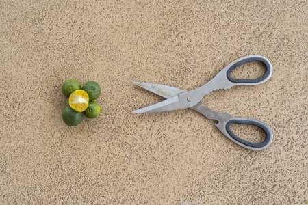 tile cutter: Lime fruit slices with scissors Stock Photo