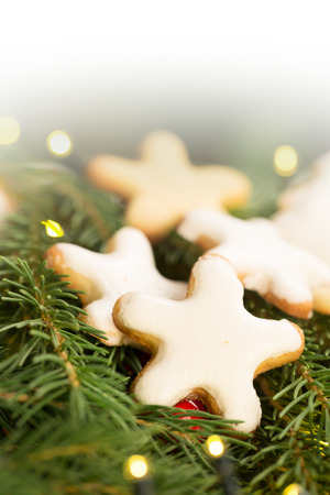 christamas: Christmas cookies (stars shape) on the branche of a spruce Stock Photo