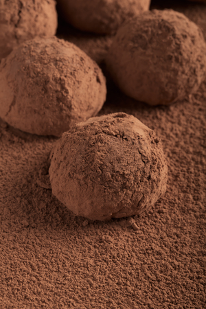 powdered: Chocolate truffles powdered with cocoa powder
