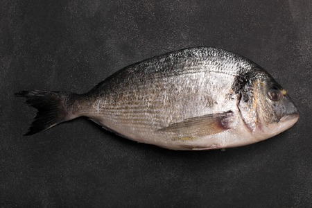 dorado fish: Fresh dorado fish on the chalkboard. Top view, close up