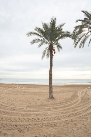 This is Costa Blanca - the coast of mediterranean sea