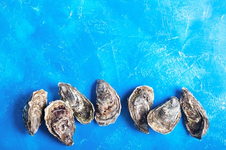 Closed oysters on blue background with copy space. Healthy sea food