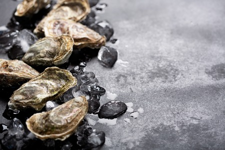 Closed oysters and ice on black background. Healthy sea food, copy space