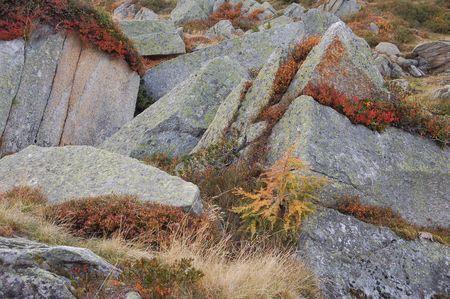 surge: stones Stock Photo
