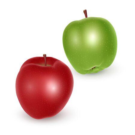 Set of green and red apples on white background, Ripe apples, vector eps 10 illustration Illustration