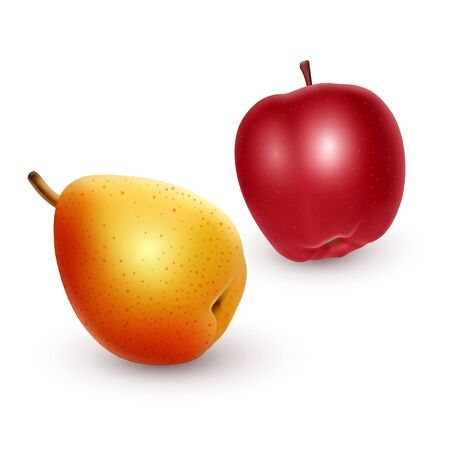 ripe Apple and pear on light background, realistic vector illustration