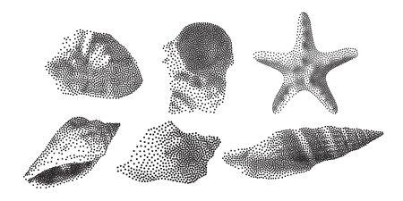 Set of Seashells on white background, seashells in Pointillism style, Vector EPS 10 illustration
