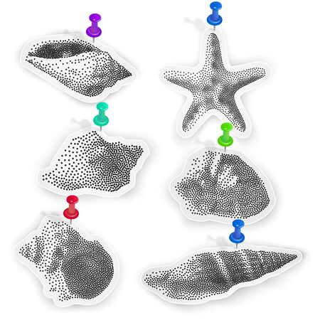 Set of stickers with the image of shells on white background, seashells in Pointillism style, Vector EPS 10 illustration