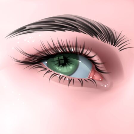 Beautiful green woman's eye, with long cilia, eye in realistic style, vector EPS 10 illustration