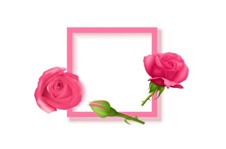 Beautiful flowers composition. Blank frame for text, pink rose flowers on White background. Valentines Day, Easter, Birthday, Mother's day, top view with copy space, vector illustration Stock Illustratie