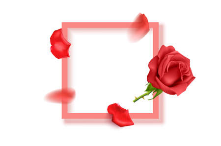 Beautiful flowers composition. Blank frame for text, pink rose flowers on White background. Valentines Day, Easter, Birthday, Mother s day, top view with copy space, vector format