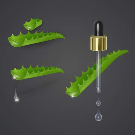 Realistic aloe Vera oil jar on dark background, vector EPS 10 illustration