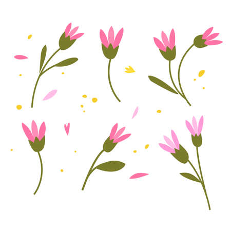Collection of hand drawn plants. Botanical set of sketch flowers and branches, vector illustrations