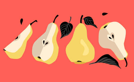 Yellow pears with black leaves, pears in a cartoon style, modern style 向量圖像