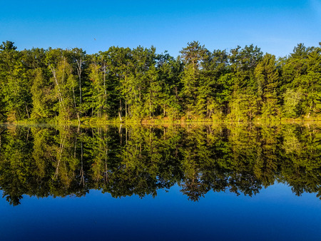 shorelines: An image taken aboard a boat, showcasing a beautiful shoreline of trees. In the water a high quality reflection almost as clear as the image itself. Stock Photo