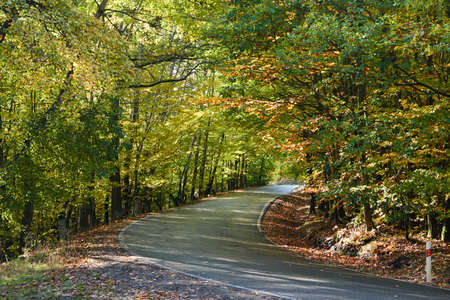 Fall is coming. It often rains and blows. The trees are painted in beautiful colors. October 2020. The beautiful landscape is covered with a duvet made of leaves and our whole country starts to play with a lot of colors.