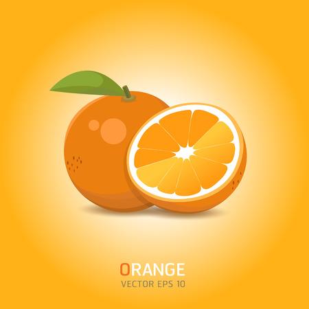 zest: Vector oranges fruit illustration Illustration