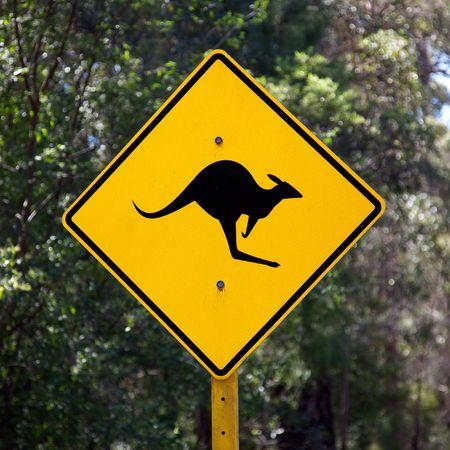 A roadside kangaroo warning sign in rural Australia. photo