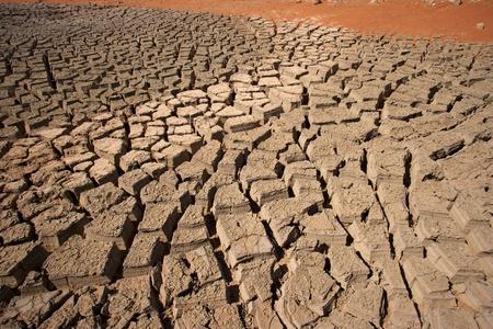 united arab emirate: Cracked mud in the desert near Al Ain, in the emirate of Abu Dhabi, United Arab Emirates.