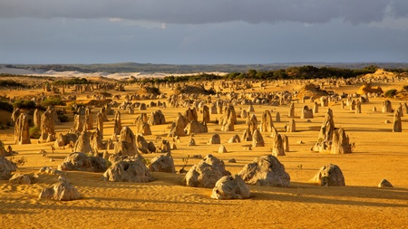 An overview of part of the Pinnacles Desert in the heart of the Nambung National Park, Western Australia. Standard-Bild