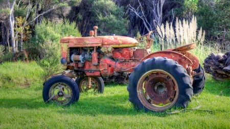 old tractors: An abandoned tractor on North Island, New Zealand.