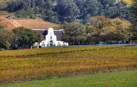surviving: Groot Constantia, the finest surviving example of Cape Dutch architecture, and one of South Africas foremost historical monuments and tourist attractions, dates back to 1685.  Stock Photo