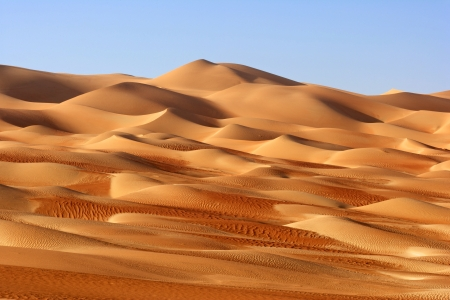 A dune landscape in the Rub al Khali or Empty Quarter. Straddling Oman, Saudi Arabia, the UAE and Yemen, this is the largest sand desert in the world. photo