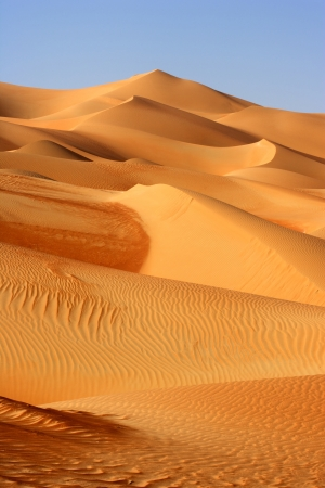 A dune landscape in the Rub al Khali or Empty Quarter. Straddling Oman, Saudi Arabia, the UAE and Yemen, this is the largest sand desert in the world. Standard-Bild