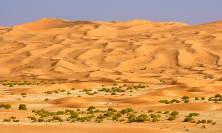 A wadi in the Rub al Khali or Empty Quarter. Straddling Oman, Saudi Arabia, the UAE and Yemen, this is the largest sand desert in the world.