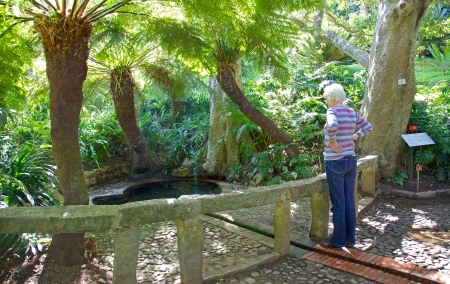 incorrectly: Dating back to approximately 1811, Colonel Bird s Bath in Kirstenbosch, Cape Town, is also incorrectly known as Lady Anne Barnard s Bath in South African folklore