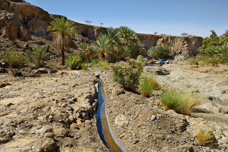 irrigation: Wadi Madbah, with its traditional irrigation canal (aflaj) and date palms,  in the desert interior of the Sultanate of Oman. Stock Photo