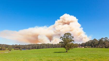 A forest fire near the town of Pemberton in Western Australia.