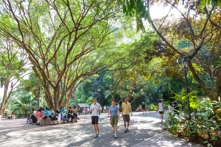 Visitors relaxing in the central area of Singapore Botanic Gardens.