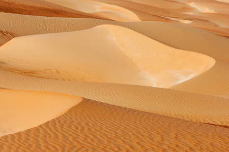 Abstract patterns in the dunes of the Rub al Khali or Empty Quarter. Straddling Oman, Saudi Arabia, the UAE and Yemen, this is the largest sand desert in the world.
