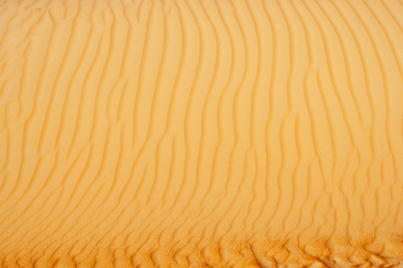 Abstract sand patterns in the dunes of the Rub al Khali or Empty Quarter. Straddling Oman, Saudi Arabia, the UAE and Yemen, this is the largest sand desert in the world.