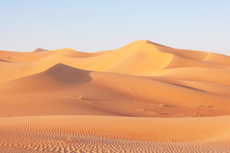 A dune landscape in the Rub al Khali or Empty Quarter. Straddling Oman, Saudi Arabia, the UAE and Yemen, this is the largest sand desert in the world. 스톡 콘텐츠