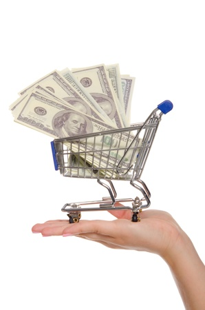dollar bills in shopping trolley on the palm photo