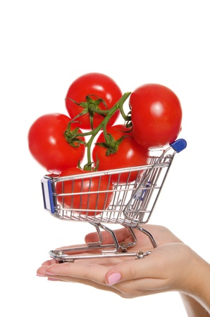 branch with tomatoes in shopping trolley on  palm Stock Photo - 13199242