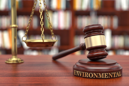 Environmental Law. Gavel and word Environmental on sound block