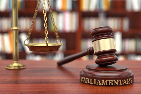 Parliamentary Law. Gavel and word Parliamentary on sound block