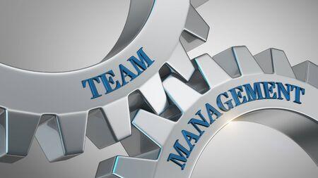 Team management written on gear wheel