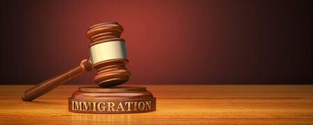Immigration Law. Gavel and word Immigration on sound block 스톡 콘텐츠