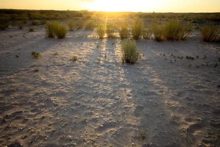Empty beach at sunset.