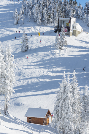 wintersport: POIANA BRASOV, ROMANIA - JANUARY 24, 2016: Mountain cabin set in a valley covered by snow in Poiana Brasov resort, Romania