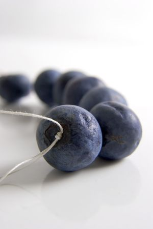 cathartic: Bluberries on a string