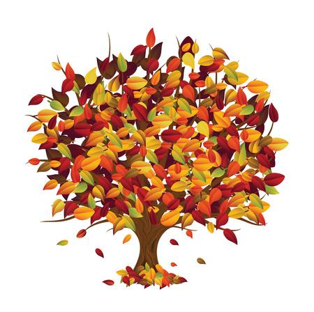 Autumn Tree Stock Vector - 5230552