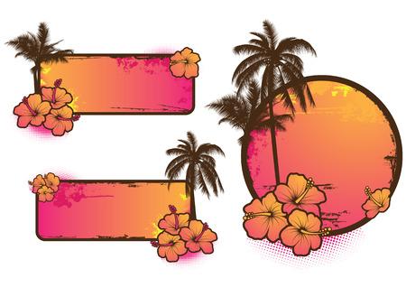 hibiscus: Conjunto de etiquetas tropicales 3