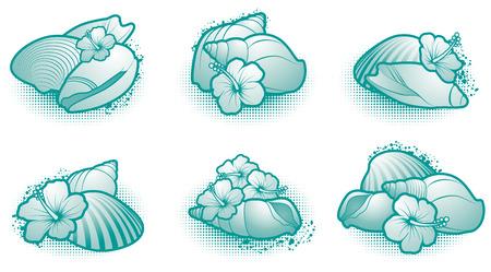 Seashell elements Vector