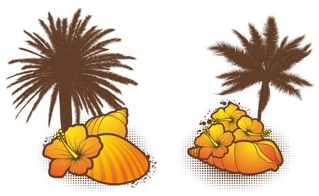 Seashell elements, orange 2 - vector Vector